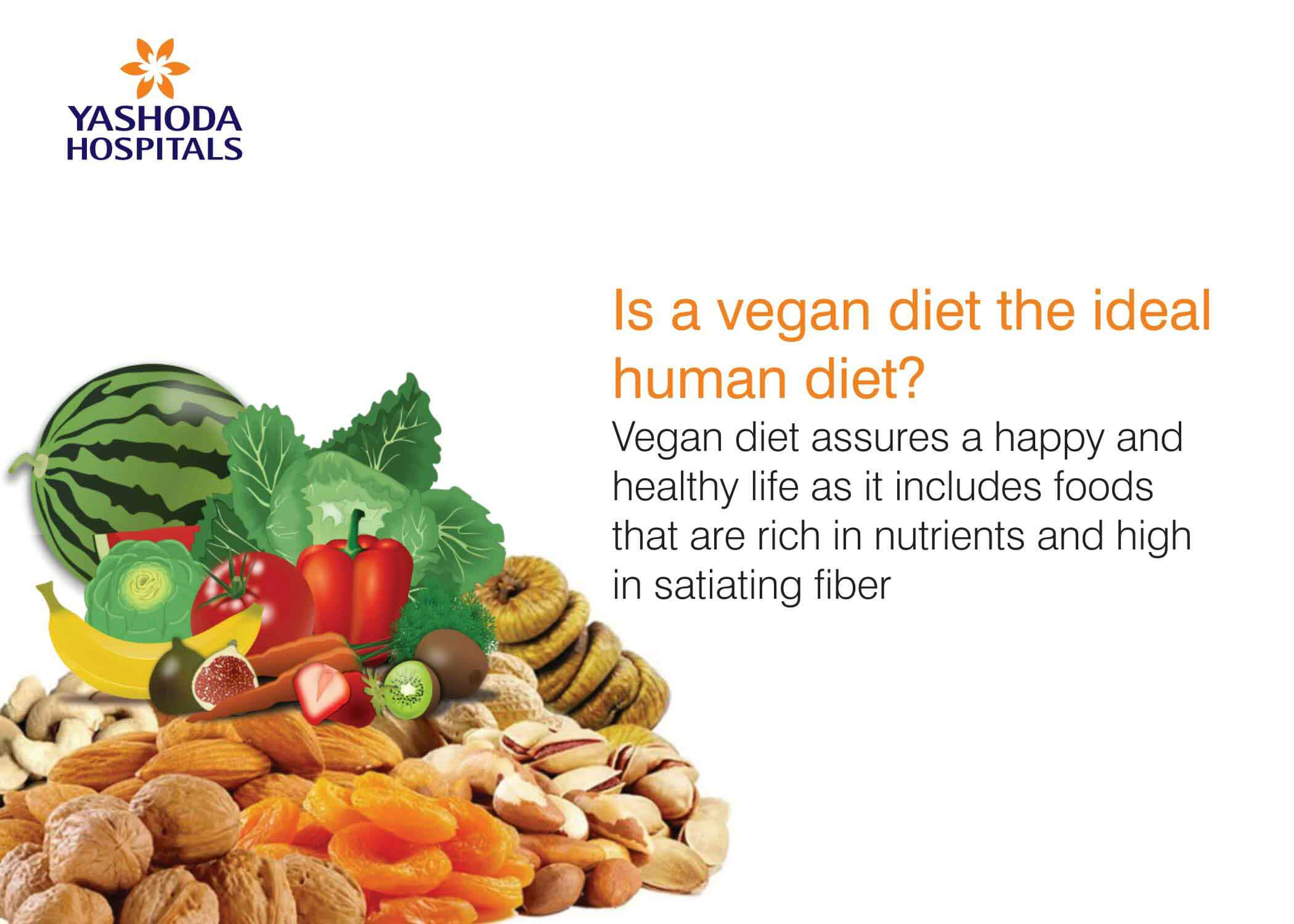 vegan diet the ideal human diet