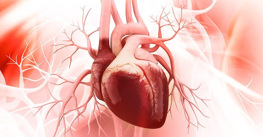Adult Congenital Heart Disease Symptoms-Treatement