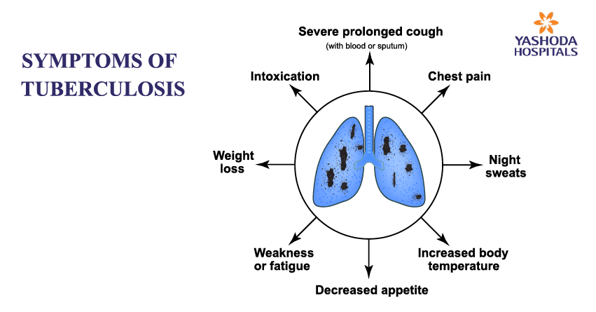 What effects does TB have on the body