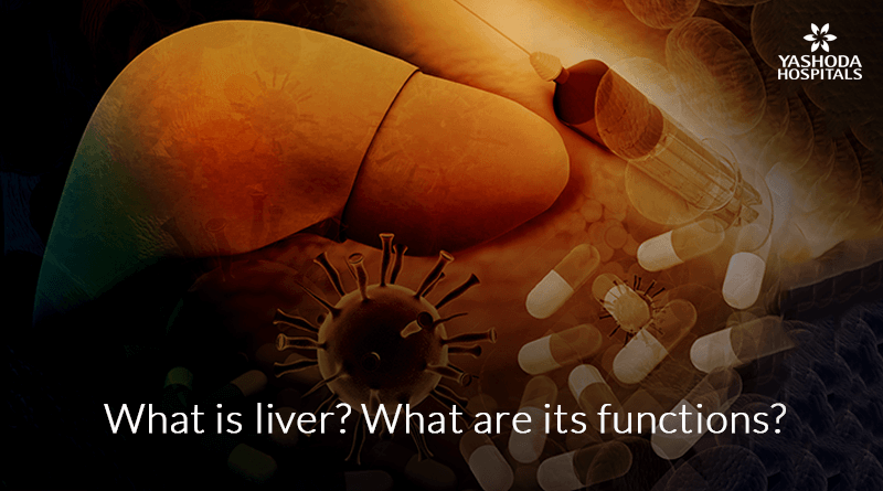 What is liver? What are its functions?
