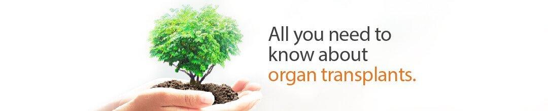 organ transplant-banner